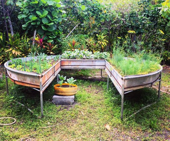 Make A Garden Out Of Your Old Trampoline